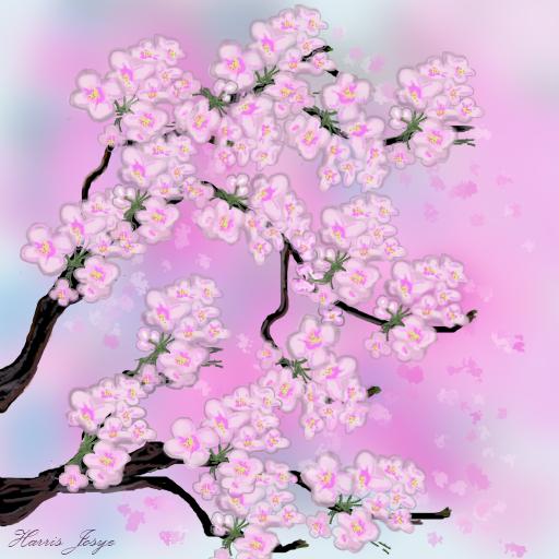 Cherry Blossom Digital Painting Cherry Blossom Flowers Digital Painting Blossom Flower