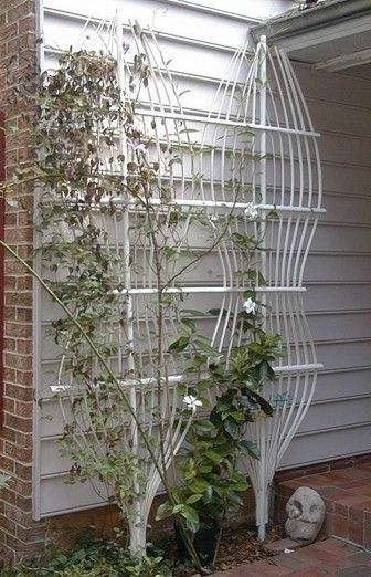 Funky Trellis Of PVC, Heated And Bent.