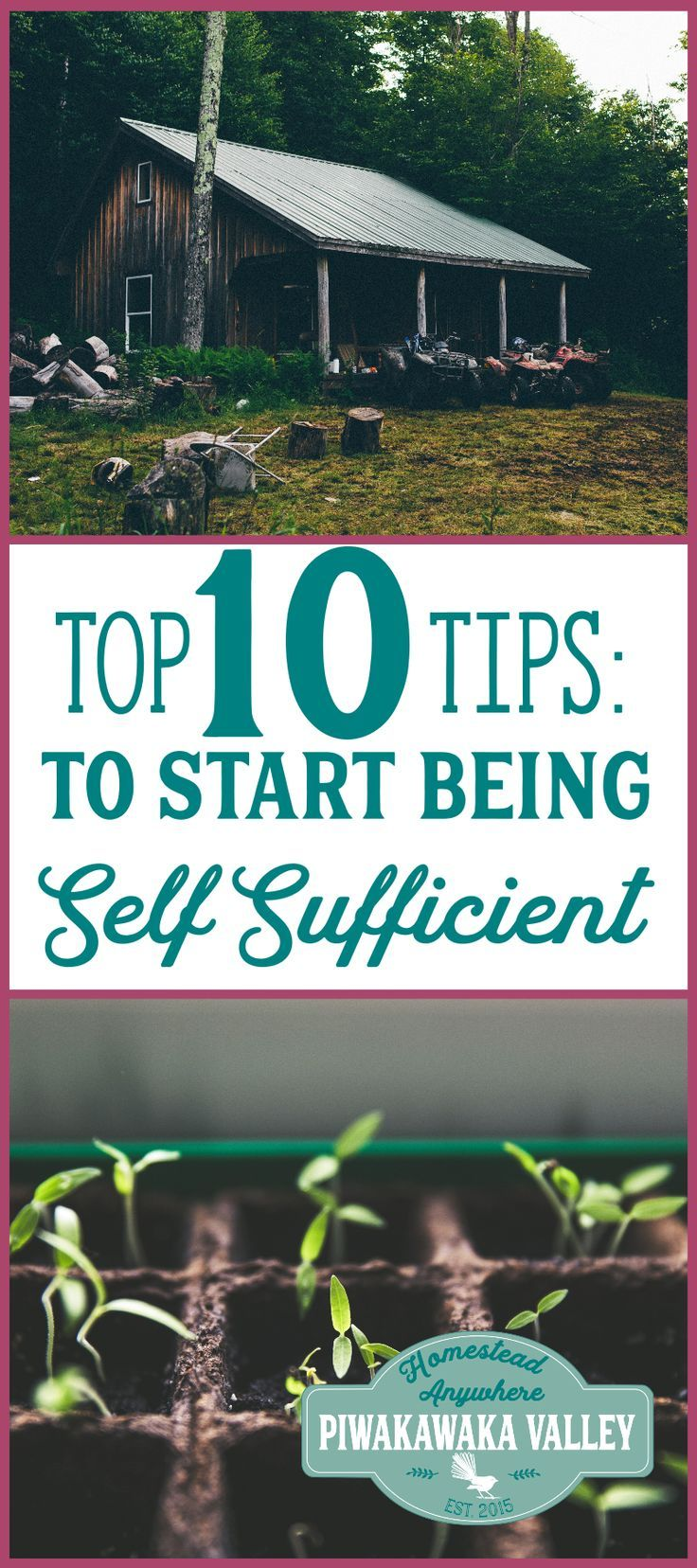 Ten Top Tips For Small Shady Urban Gardens: Being Self Sufficient: Top 10 Tips On How To Start TODAY