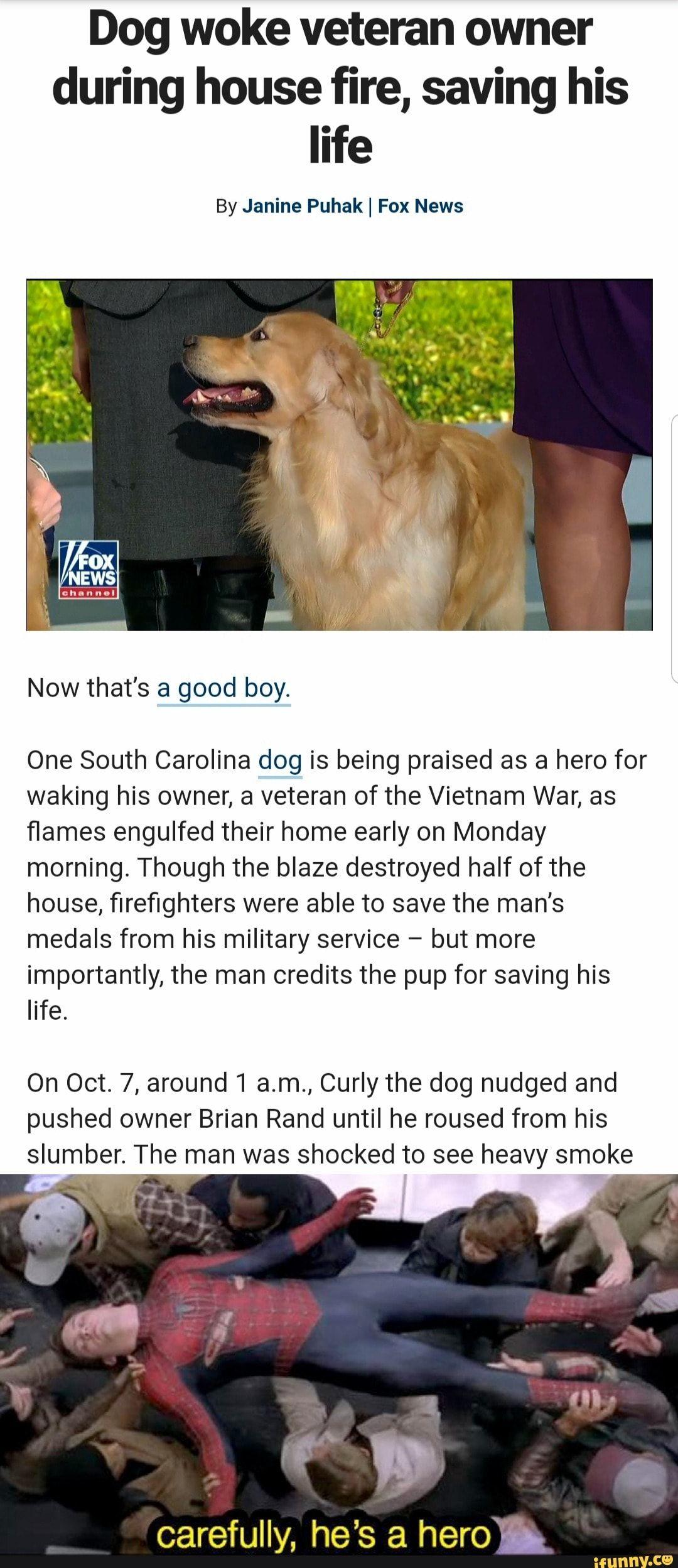 Dog woke veteran owner during house fire, saving his life
