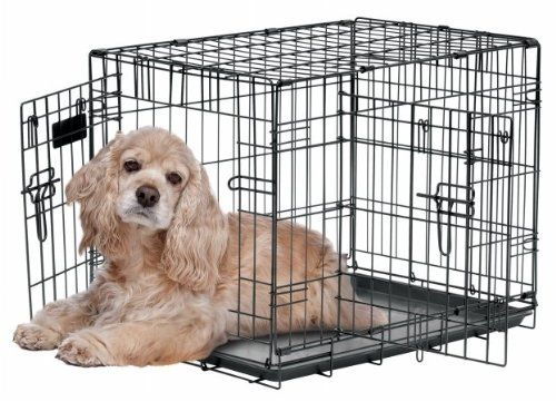 Precision Pet Provalu Awesome Dog Product Click The Image