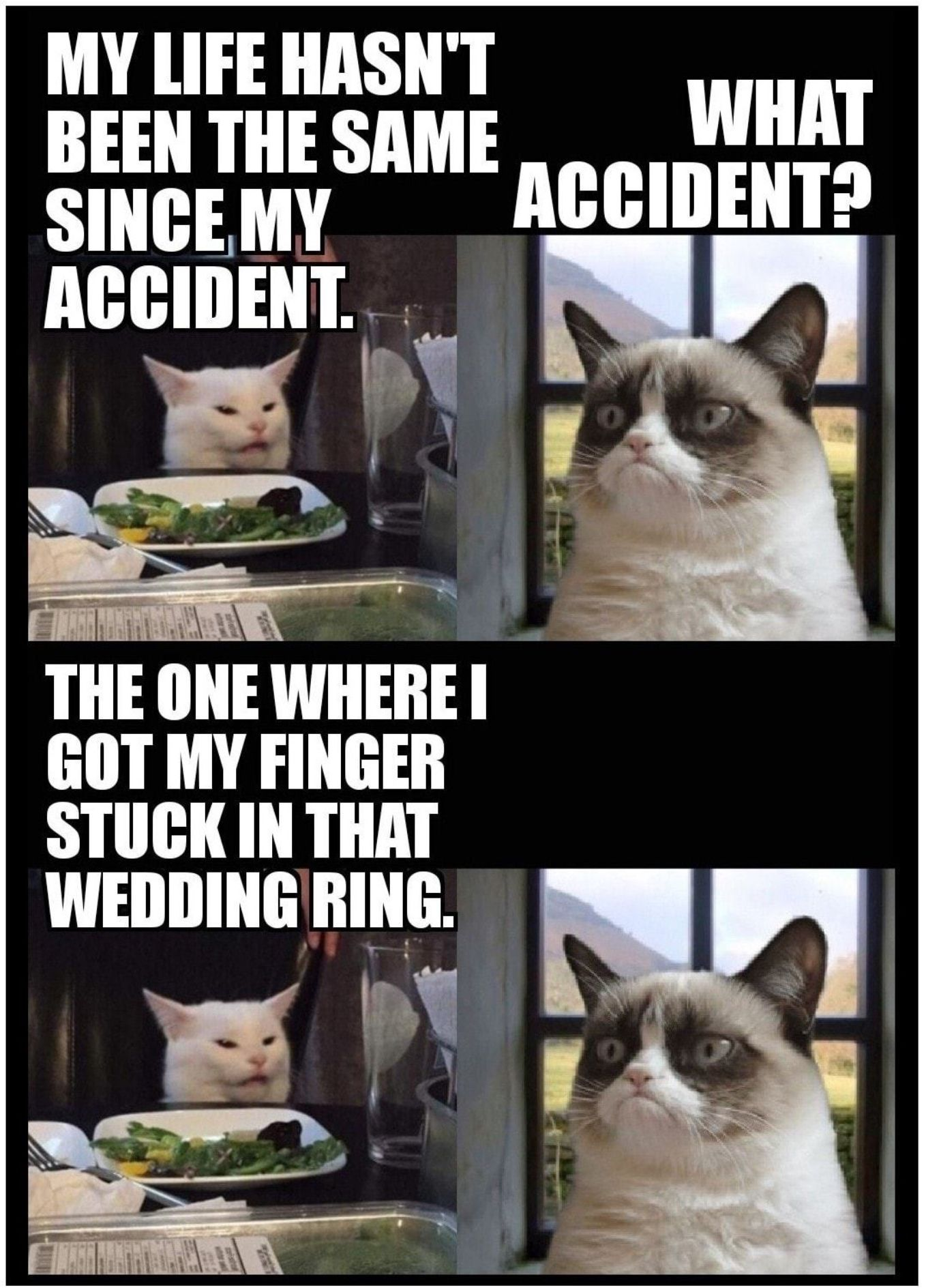 Pin On Cat Memes