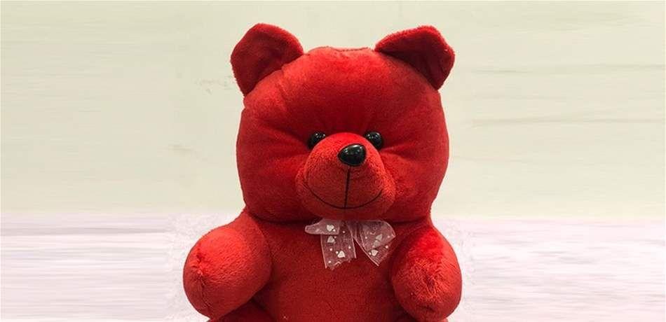 دبدوب أحمر ضخم يتجول في بيروت ويثير ضجة كل ما كبر الحب كبر الدب صورة