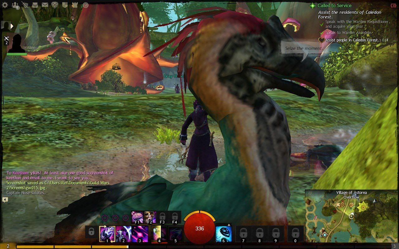 Guild Wars 2 Screenshot Photobomb Seize The Moment Indeed Guild Wars Guild Wars 2 Painting