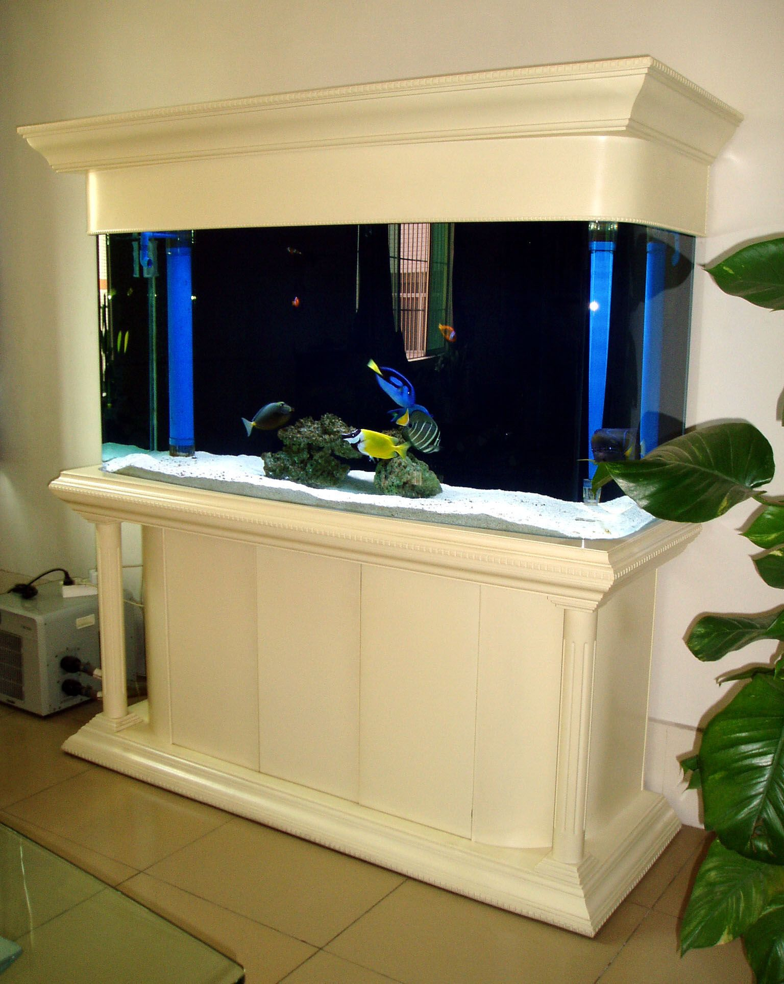 I Would Love To Have A Large Salt Water Fish Tank