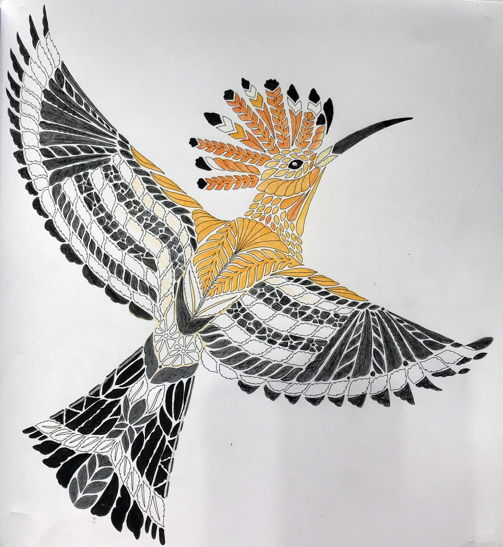 Millie Marotta 39 s Beautiful Birds and Treetop Treasures