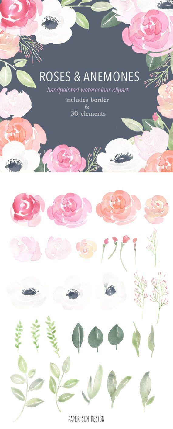 free wedding borders for invitations%0A Watercolour Clipart Roses and Anemones Elements by PaperSunDesign  Flower  border graphics for wedding invitations