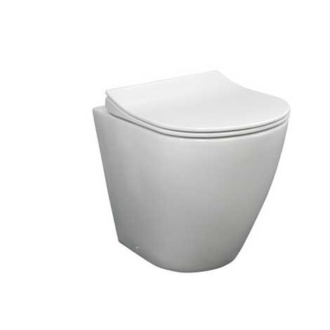 Outstanding Main Bathroom Toilet Ellisse Wall Faced Pan 509X382 Creativecarmelina Interior Chair Design Creativecarmelinacom