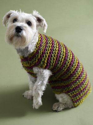City Stripes Knit Dog Sweater Free Pattern Crochet Dog