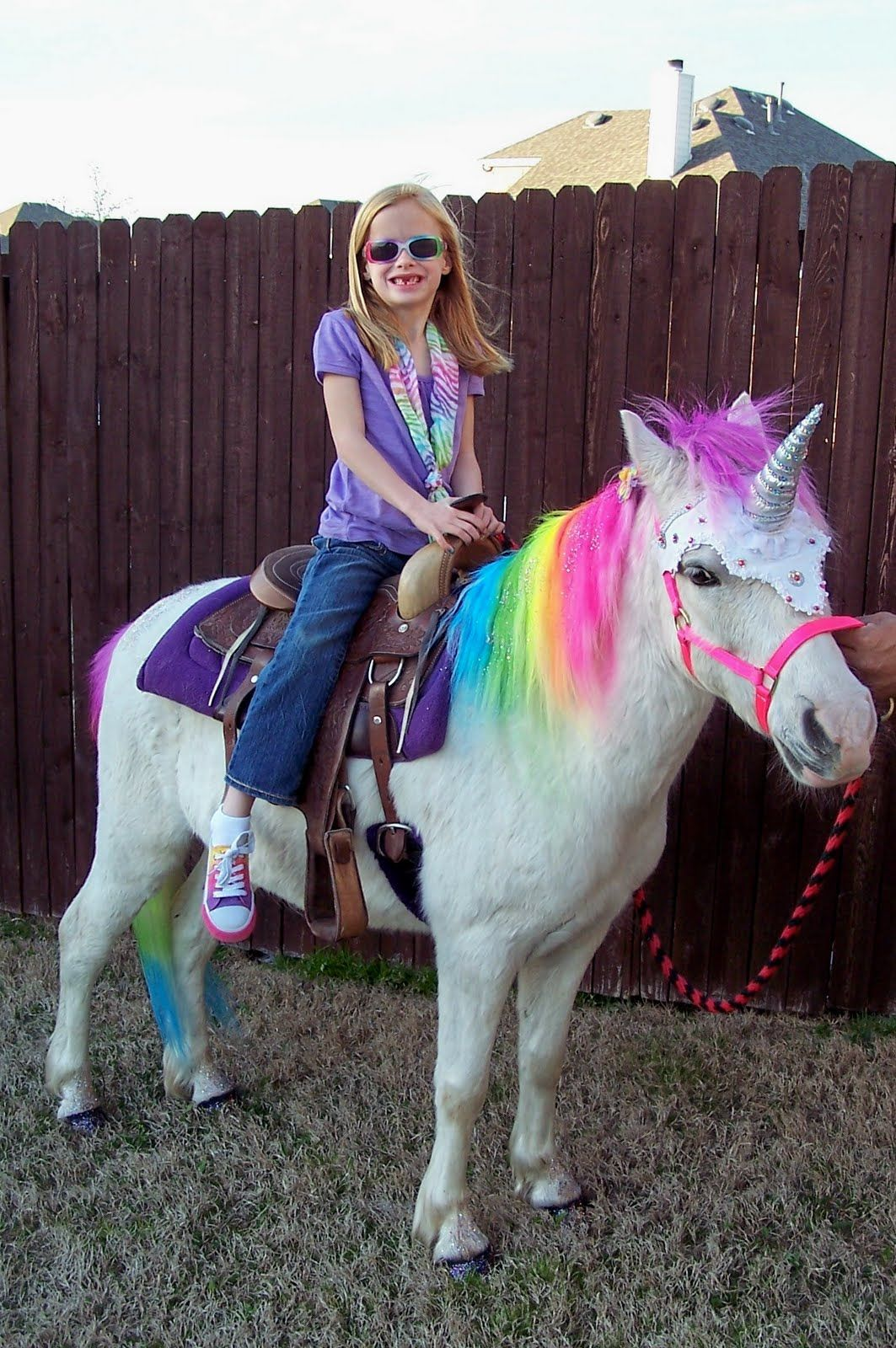 Brooke And The Rainbow Unicorn With Images Shawn Mendes