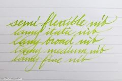 Lamy charged green - The Clumsy Penman's InKfusion Site