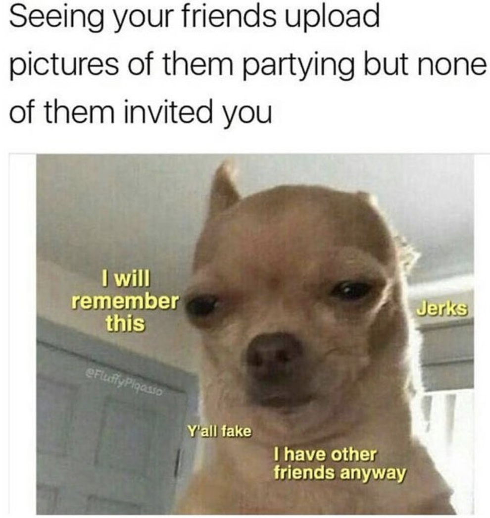 100 Chihuahua Memes That Ll Make You Laugh Harder Than You Should Terrible Memes Funny Instagram Memes Funny Animal Jokes