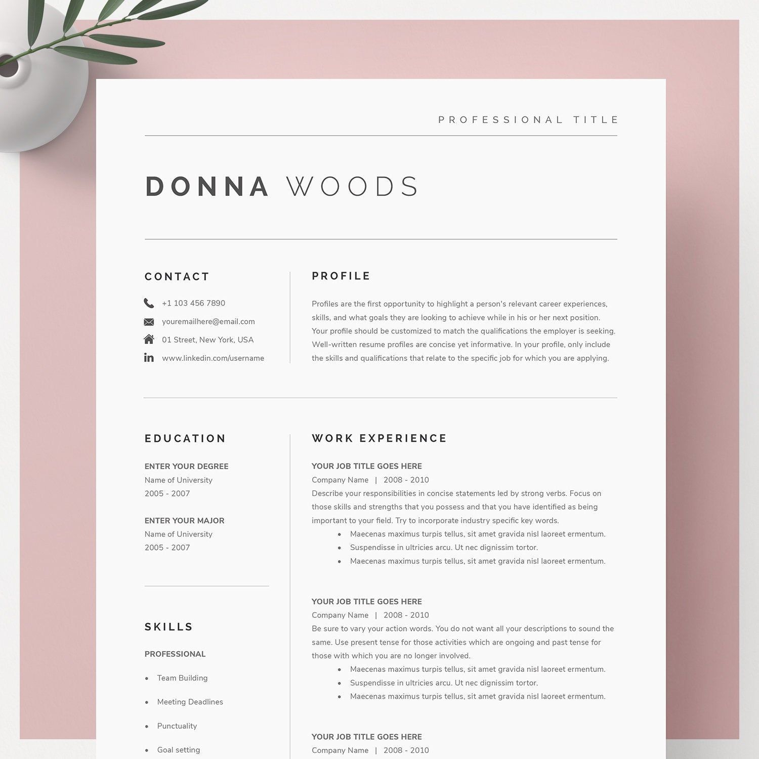 Google Docs Resume Template, Resume Template, Resume Template Word, Resume Template Pages, Professional Resume Template, CV Template,CV Word