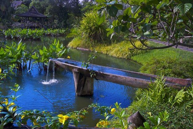 Una canoa para una fuente nunca se me hubiera ocurrido Me