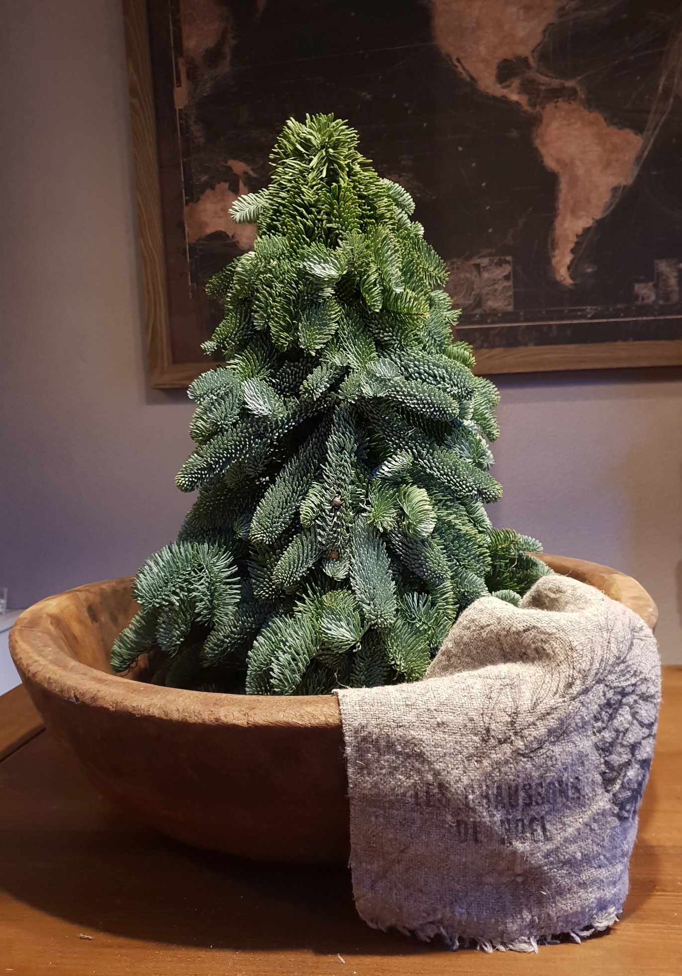 Prachtige Nobilis Boom 50 Cm Landelijk Kerst Boompje Kerst Kerst Thuis Kerst Deco