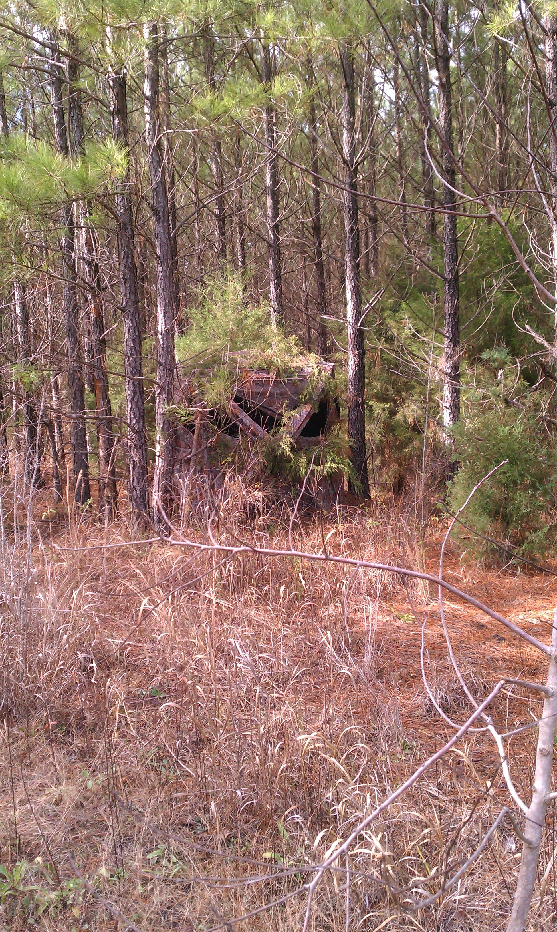 The Ground Blind Southern Georgia Hunt Camp Deer Hunting Blinds Deer Hunting Stands Ground Blinds