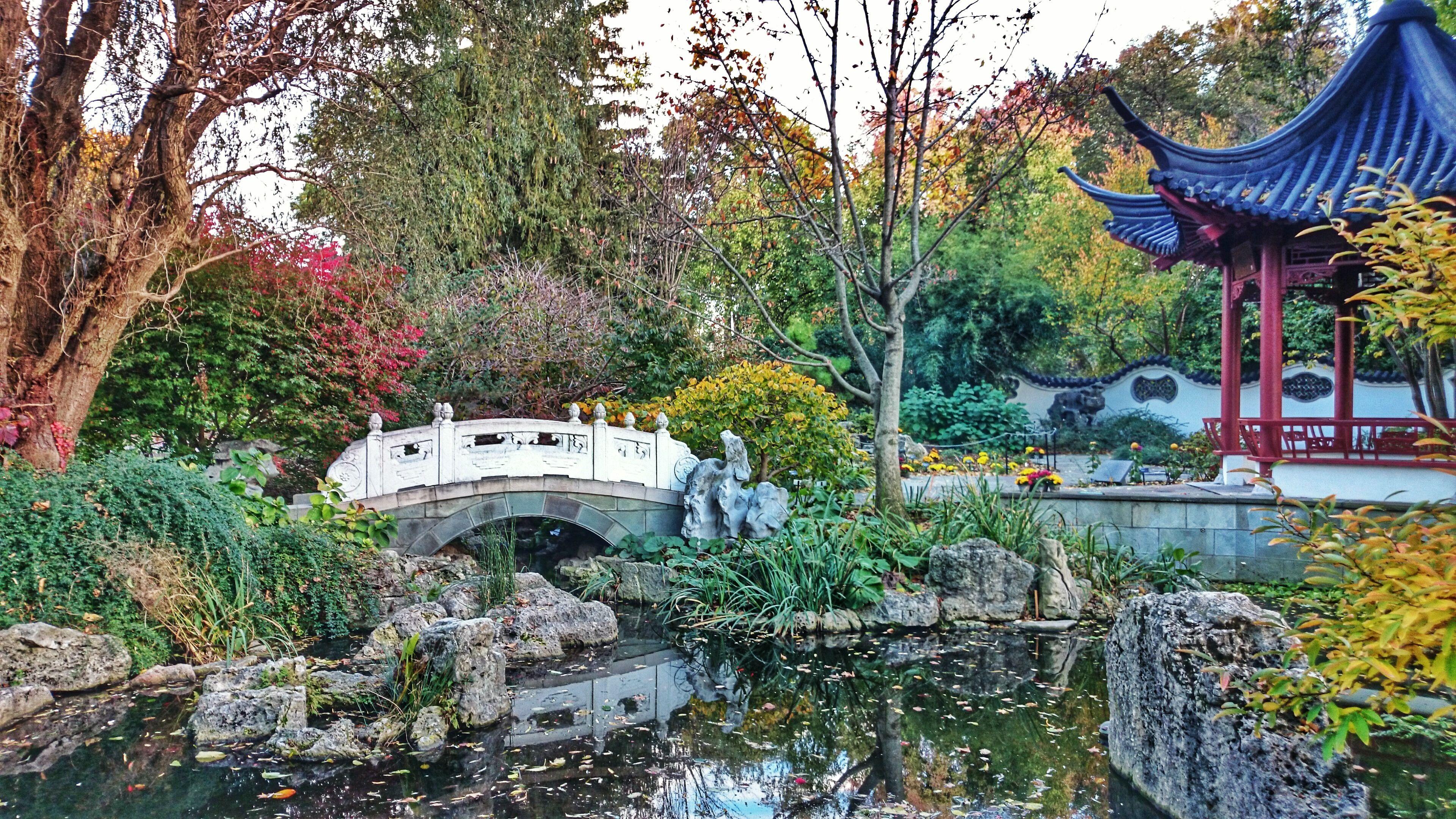 6dff7f84b84cb71967f8b1d4aa9091ac - Best Time To Visit Missouri Botanical Gardens