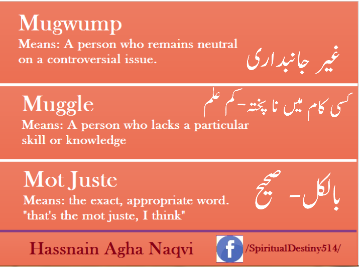 21151351 838643899642335 7929454475230119351 N Png 715 537 Urdu Words Words Knowledge