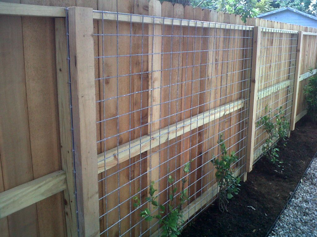 fun use of welded wire as a trellis   Projects Ravenscourt ...