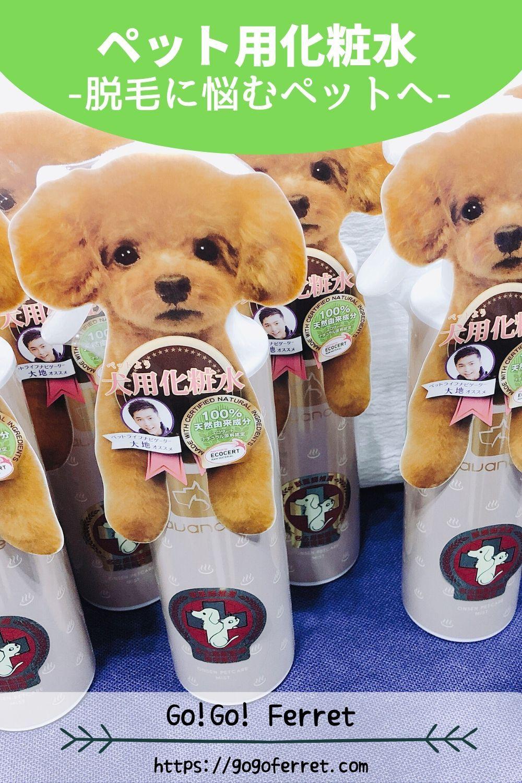 ペット用化粧水 アヴァンス を本音レビュー フェレットの脱毛への効果を検証 ペット ペット用品 犬