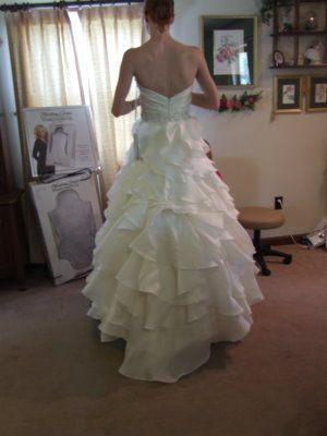 Pictures of wedding dresses with bustles