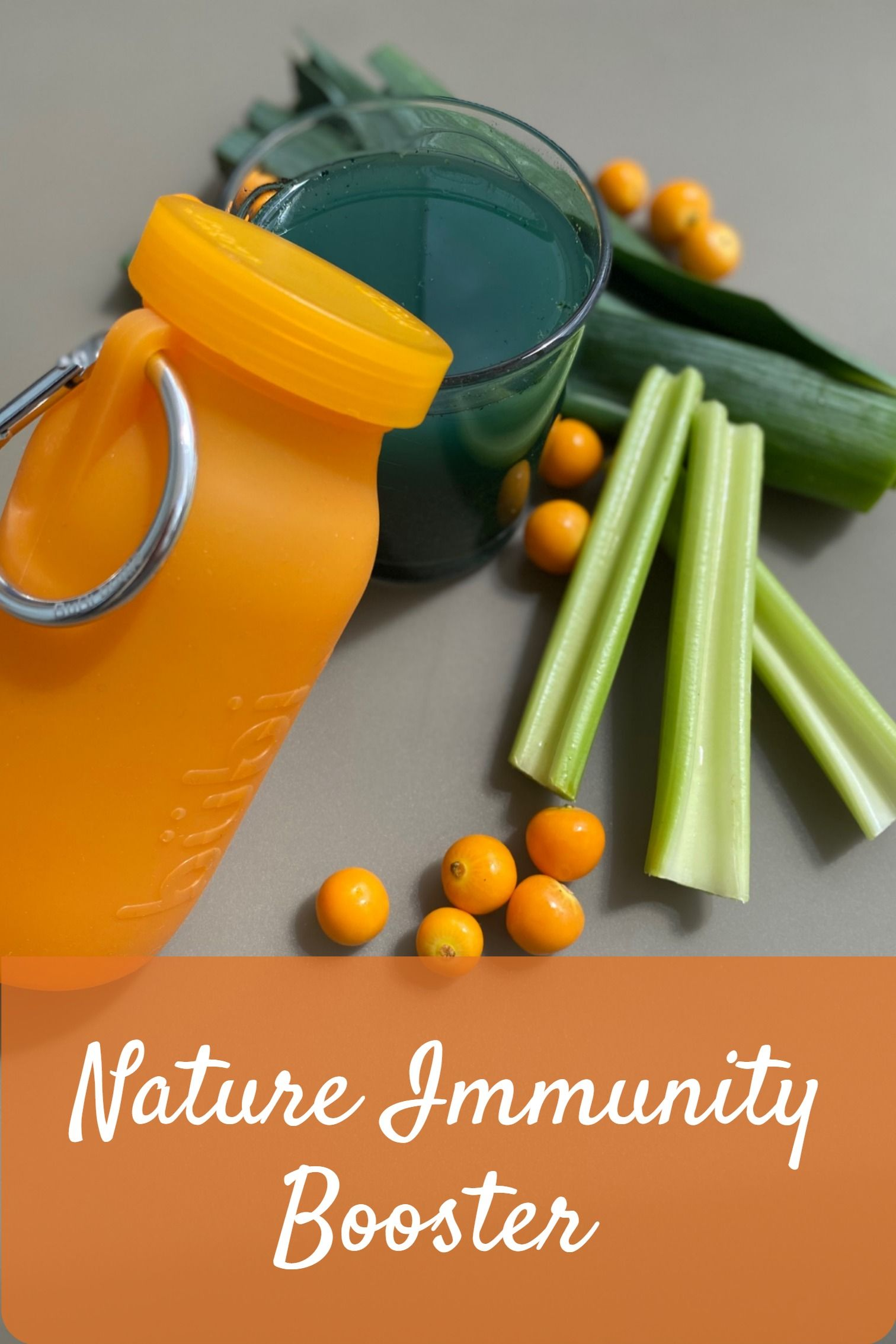 Nature Immunity Booster. Immunity Support Food for