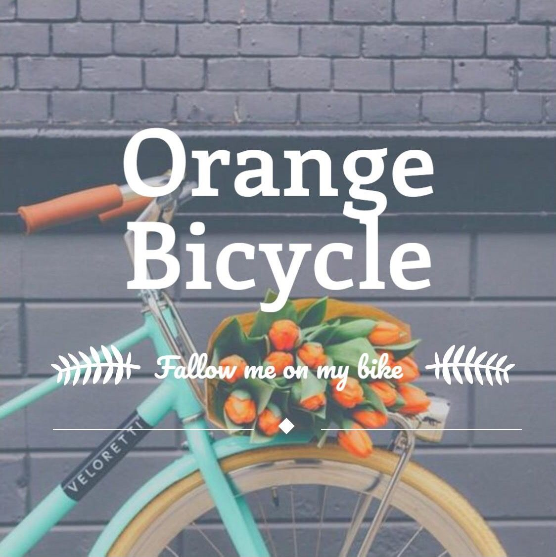 Follow me on Istagram -Orangebicycle1988.  Everyday I will explore my country the Netherlands🇱🇺. Learn about our historical buildings, traditions and enjoy our beautiful nature.