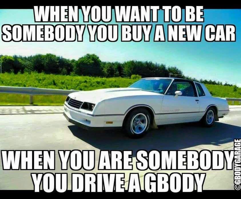 Cool Monte Meme Love The Montes Pinterest Meme Car Memes