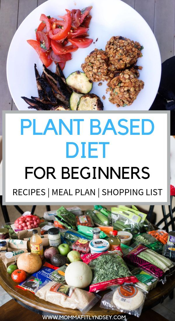 Plant Based Diet on a Budget for Beginners #plantbasedrecipesforbeginners