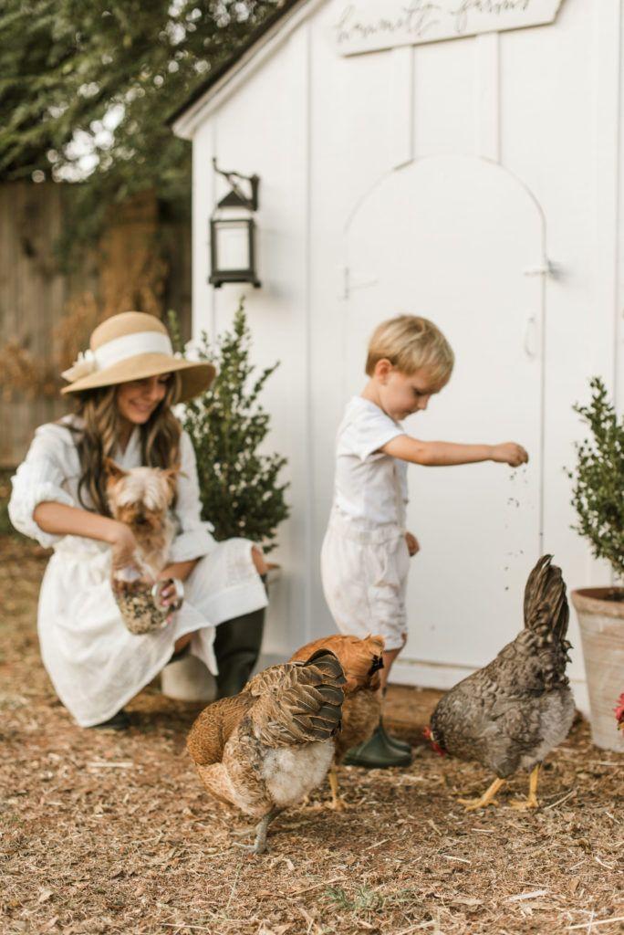 Hammett Farms Chicken Coop