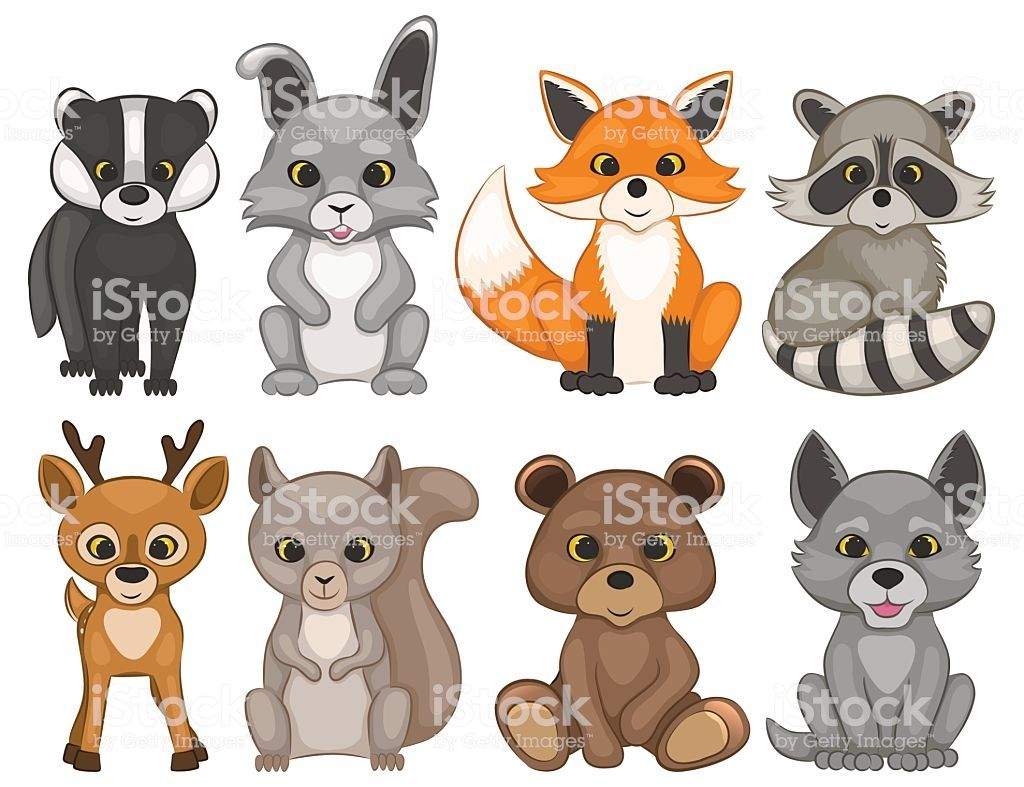 Set Of Cartoon Woodland Animals Set Of Prints For T Shirt Design Cartoon Animals Woodland Animal Art Cartoon Drawings Of Animals