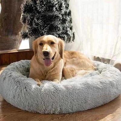 Comfy calming dog/cat bed Zabawne zwierzęta, Zwierzęta i