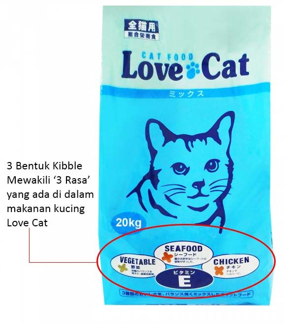 440 Gambar Binatang Kucing Dan Makanannya Gratis Terbaru
