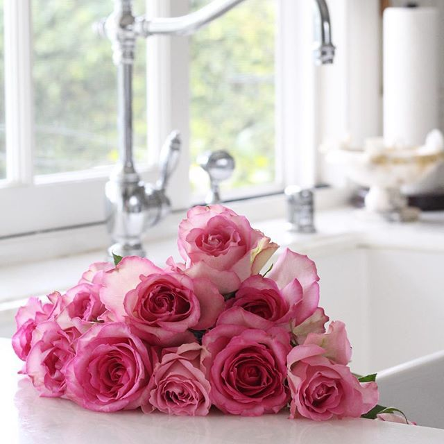 pink roses = happiness
