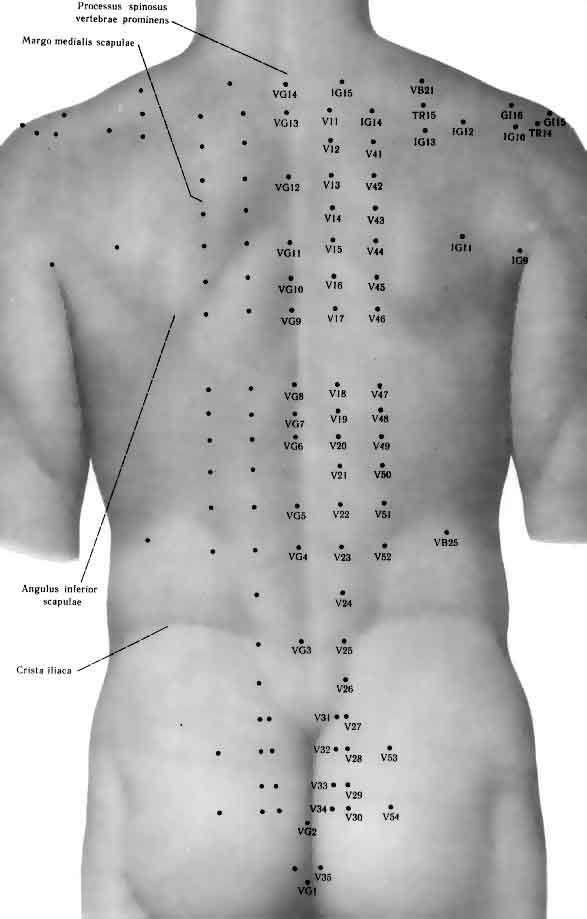Existen 4 meridianos en la espalda que integran emociones y síntomas ...