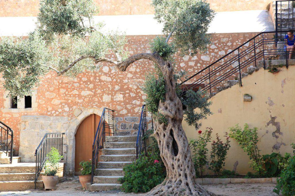 Sacred Monastery of Arkadi, Rethymnon: 1.470 Bewertungen und 1.153 Fotos von Reisenden. Sacred Monastery of Arkadi ist auf Platz 2 von 73 Rethymnon Aktvititäten bei TripAdvisor.