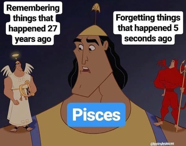 26 Funny Pisces Memes Too Real That It Hurts - OurMindfulLife.com