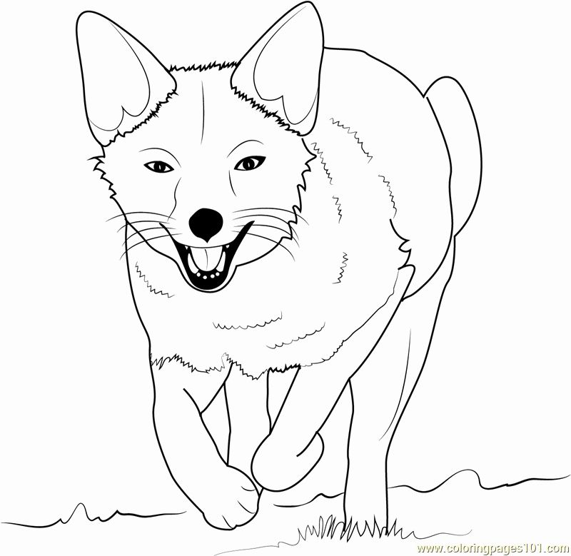 Kawaii Fox Coloring Page In 2020 Fox Coloring Page