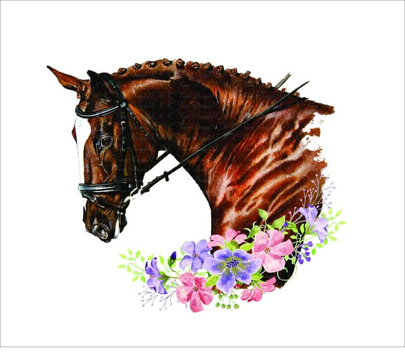 Horse Head With Flowers And Sublimation Designs Png Format Etsy Horse Designs Horses Horse Head