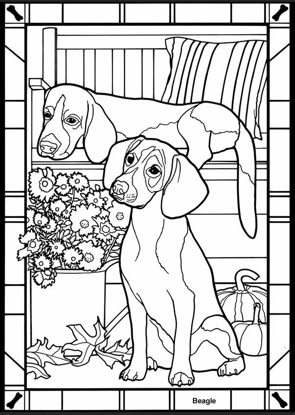 Dogs Stained Glass Coloring Book Dover Publications | infantil ...