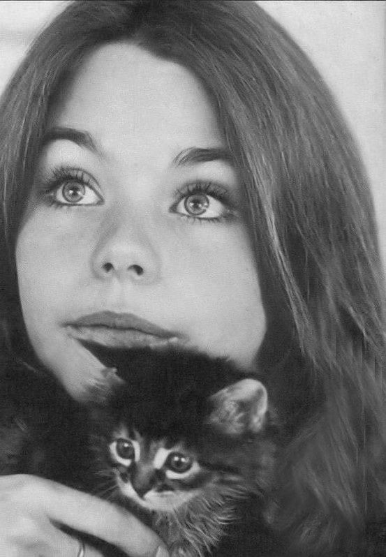 American actress Susan Dey and her cat