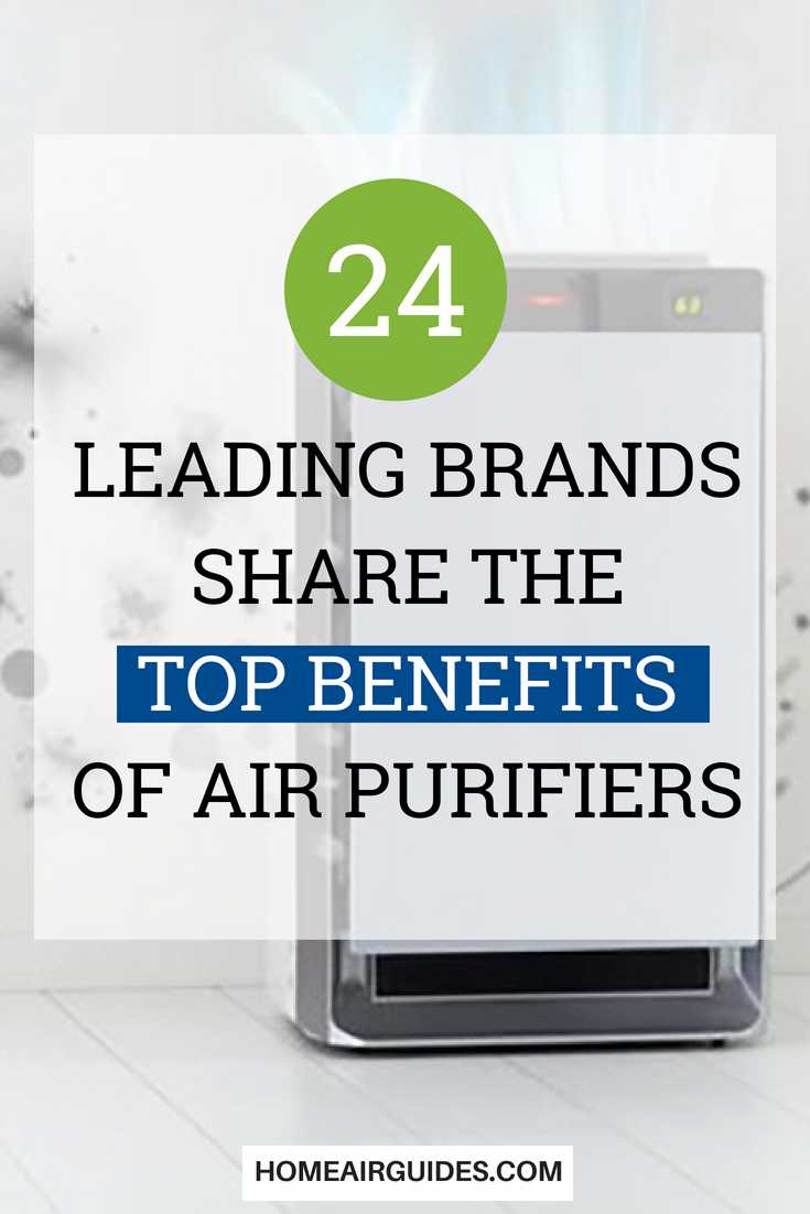 The Benefits of Air Purifiers 24 Top Brands Share Their