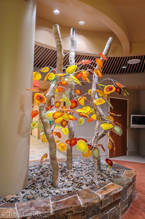 Aspen Grove Glass Steel 2012 Tahoe Forest Cancer Center