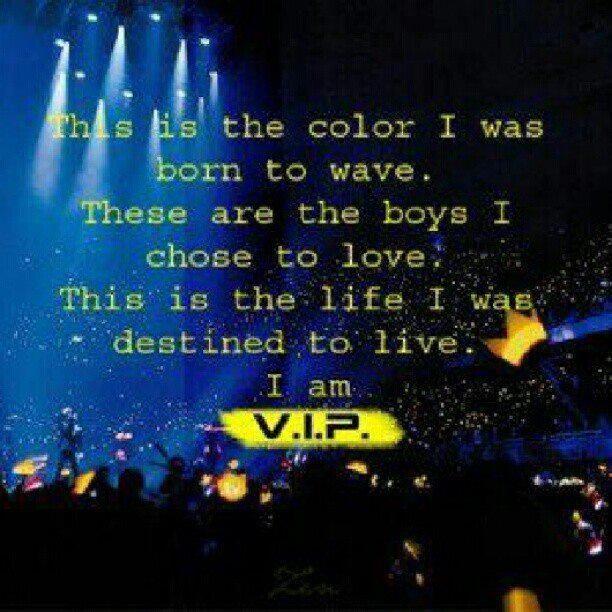 VIP forever! BIGBANG IS VIP