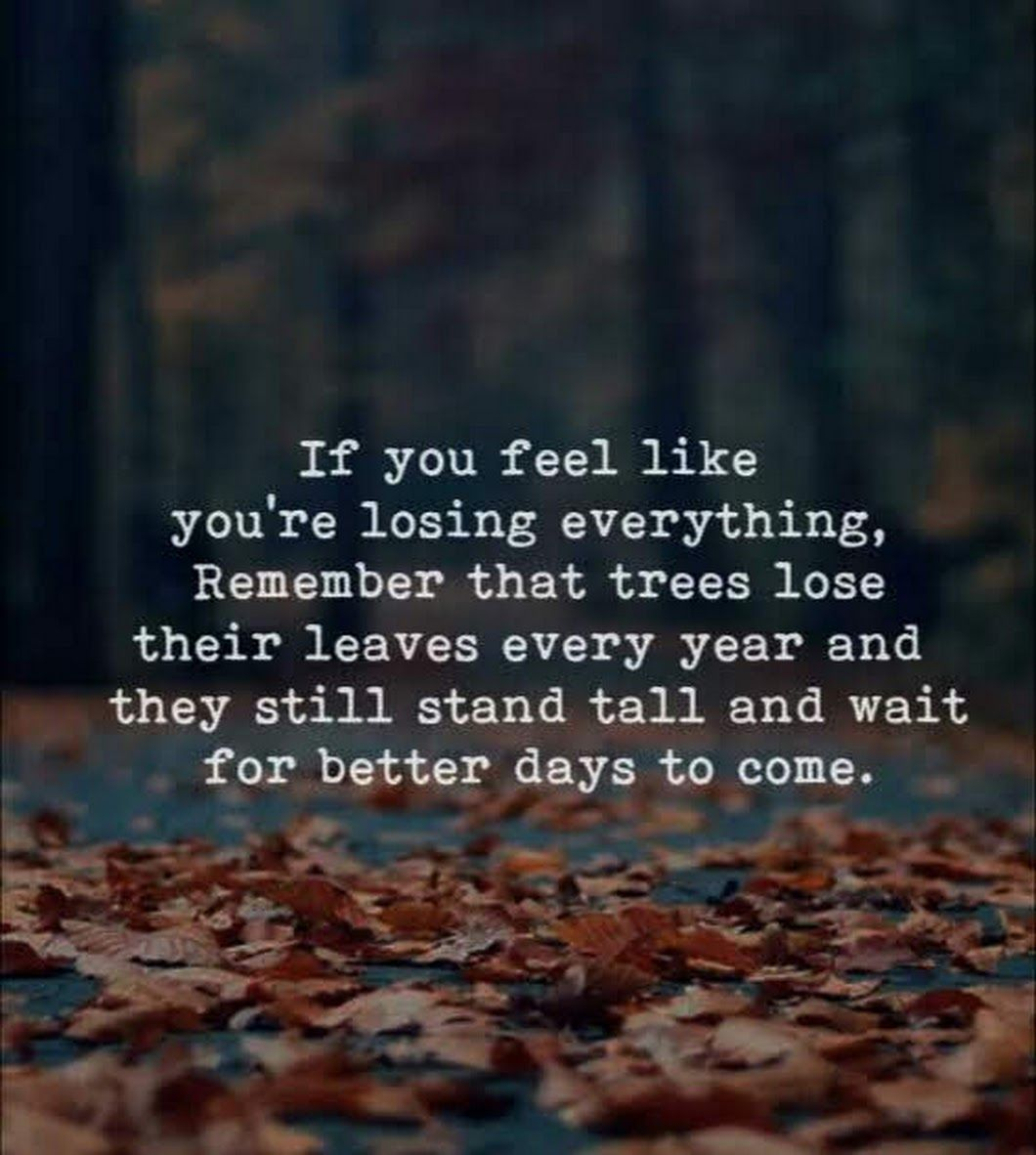 Wait For Better Days To Come Better Days Are Coming How Are You Feeling Quirky Quotes
