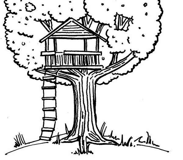 Kids Drawing Of A Treehouse Coloring Page Color Luna Color Coloring Drawing Kids Luna Page Treehouse In 2020 Drawing For Kids Tree House Drawing Coloring Pages
