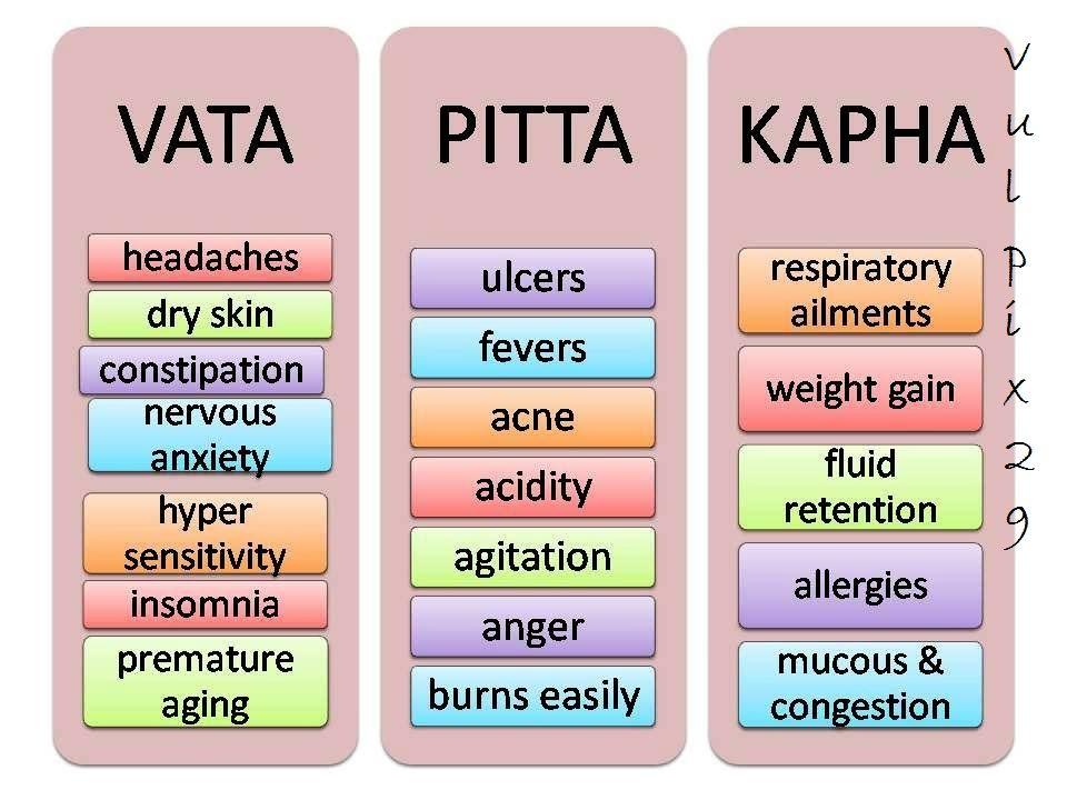 DOSHAS: Vata ~ Pitta ~ Kapha ///Os doshas dominantes em