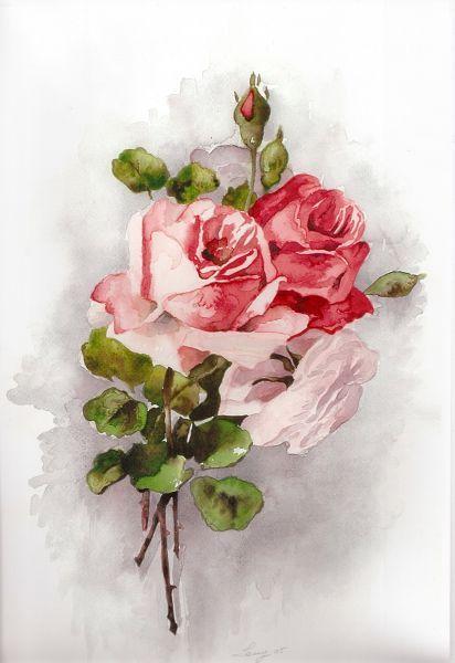 rose dipinte ad acquerello  Cerca con Google  fiori