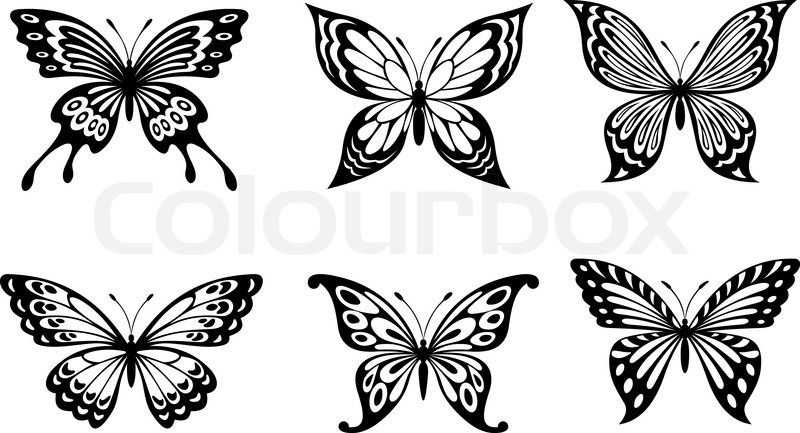 71d54f426ea21 Beautiful butterflies | Stock Vector | Colourbox White Butterfly Tattoo, Butterfly  Tattoo Designs, Pyrography