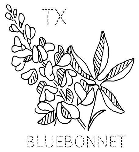 Texas Bluebonnet | Bordado, Dibujo y Cosas favoritas